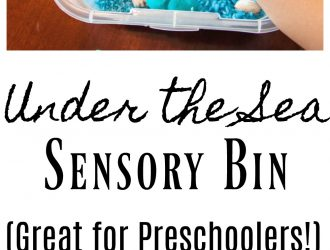 Under The Sea Rice Sensory Bin