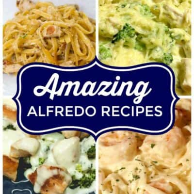 If you are looking for amazing alfredo recipes then look no further. These simple Alfredo Recipes include alfredo pasta recipes, spaghetti squash alfredo recipes, and more! #Alfredo #Pasta #Sauce #SpaghettiSquash #Chicken #Shrimp