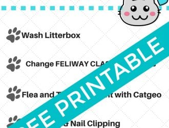Cat Owner Monthly Checklist + Printable