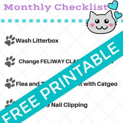 Cat Owner Monthly Checklist printable