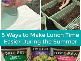 5 Ways to Make Lunch Time Easier During the Summer