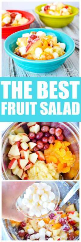 If you are looking for an amazing fruit salad recipe then you are going to love this easy fruit salad recipe. This fruit salad is mostly healthy and made with greek yogurt. This creamy fruit salad is perfect for BBQs, lunches and more! #Fruit #FruitSalad #CreamyFruitSalad #EasyFruitSalad #GreekYogurt