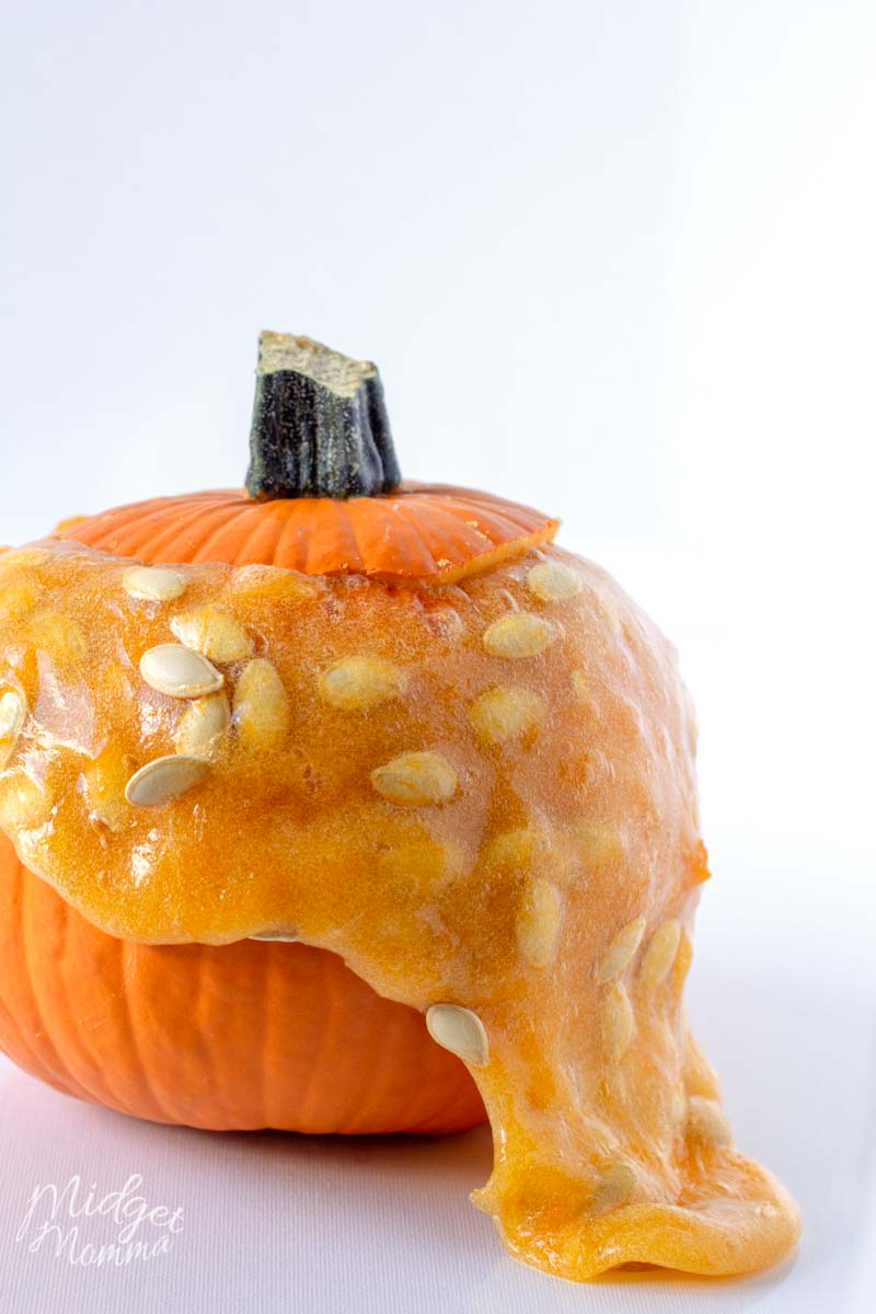 pumpkin slime using a real pumpkin