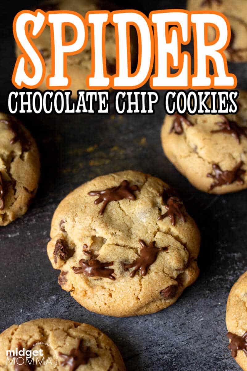 spider chocolate chip cookies RECIPE