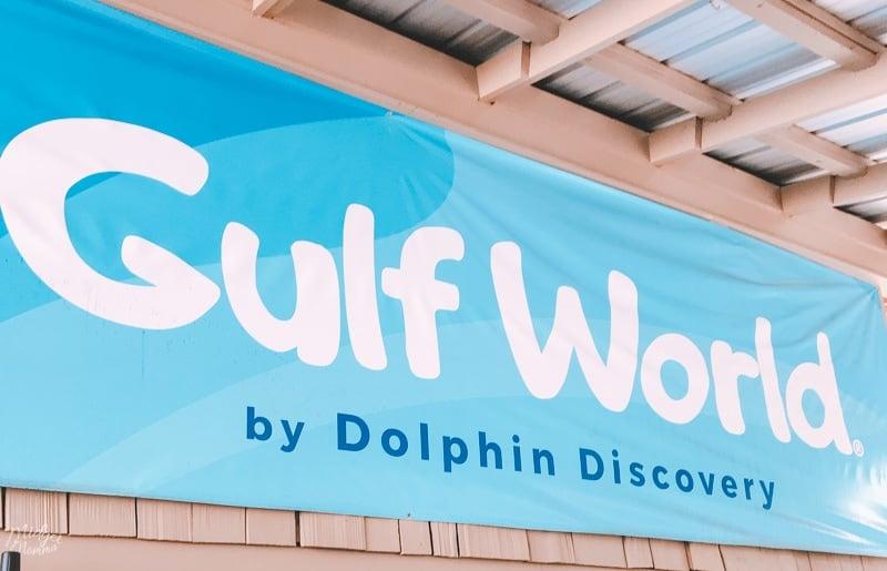 Gulf World Marine Park- Swim with Dolphins Panama City Beach