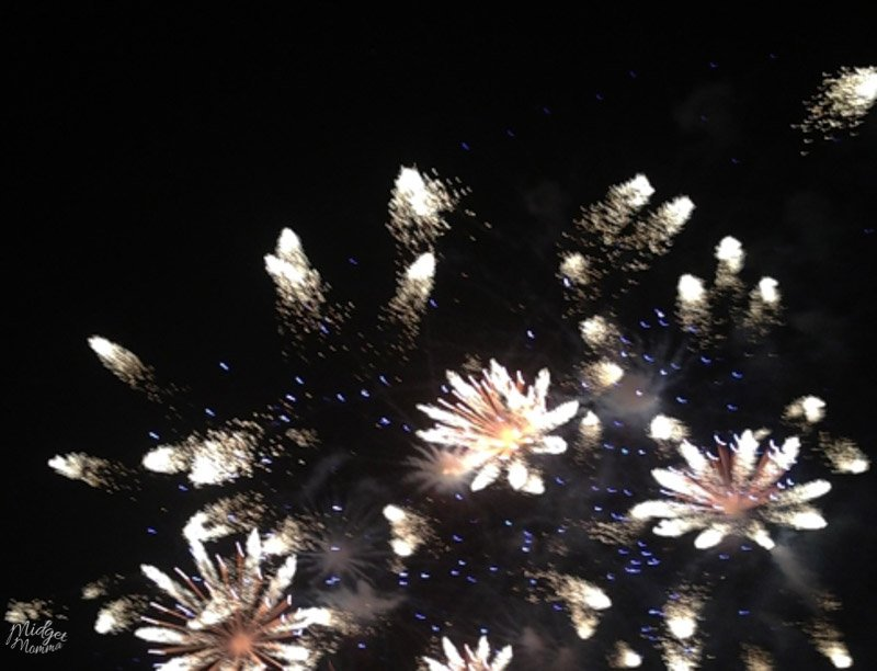 Disney World Deluxe Resorts fireworks