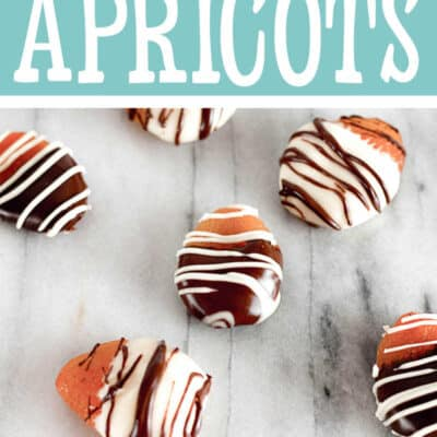 Chocolate Covered Dried Apricots RECIPE