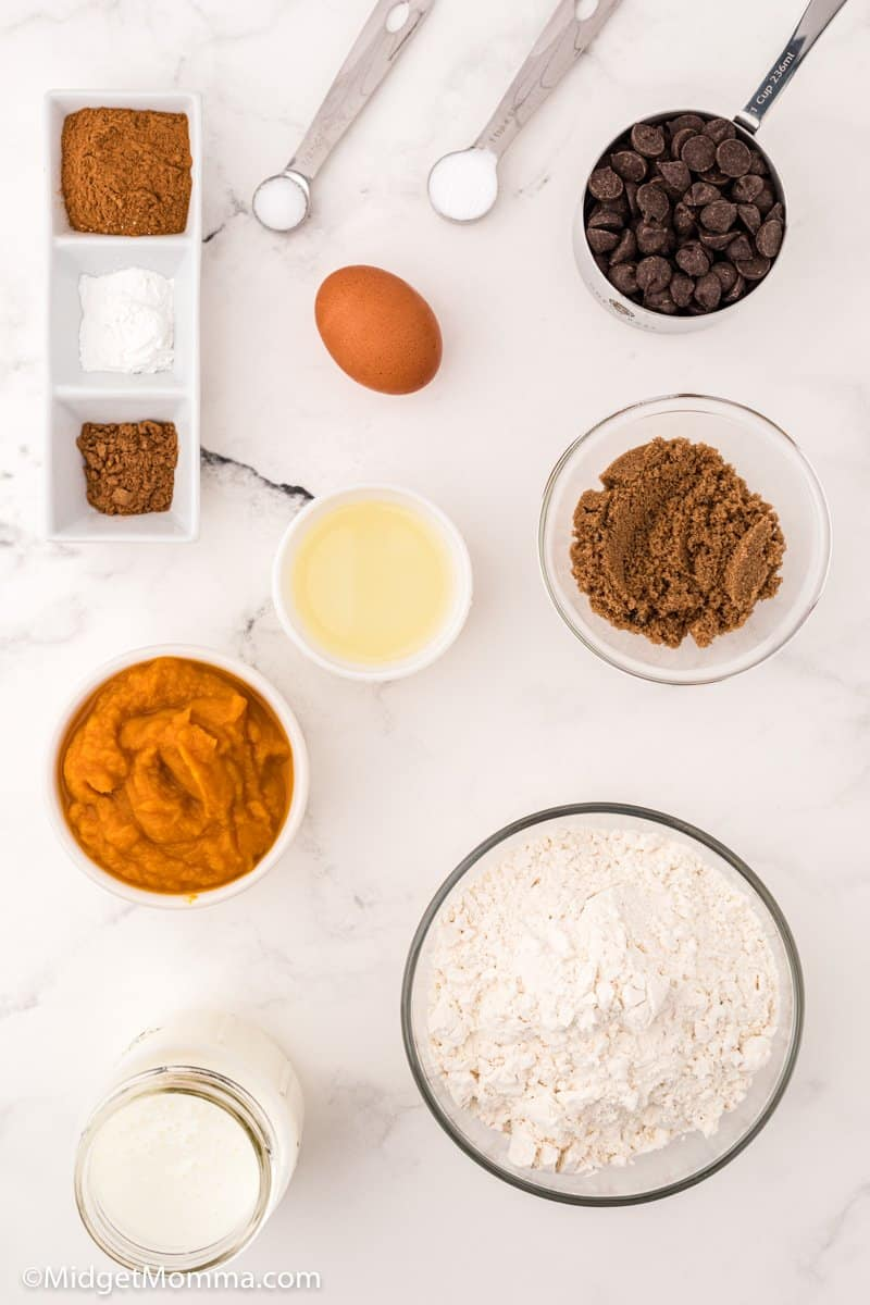 Pumpkin Chocolate Chip Pancakes ingredients