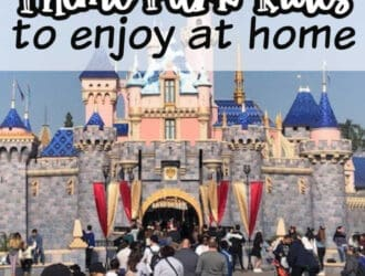 Virtual Theme park rides to enjoy at home