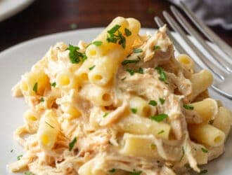 Slow Cooker Creamy Italian Chicken Pasta