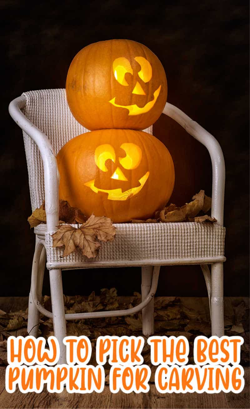 Brightly lit pumpkins sitting on chair surrounded by fallen leaves