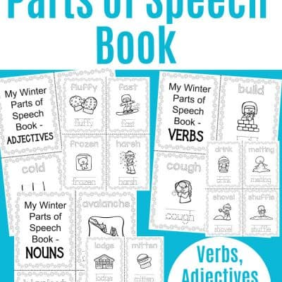 Winter Themed Parts Of Speech Worksheets Printable