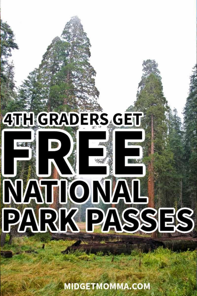 4th grader free national park pass