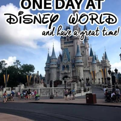 One Day at Disney World